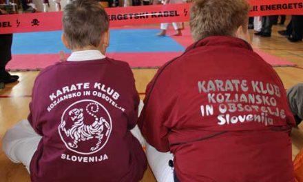 V Podčetrtku tekma karateistov