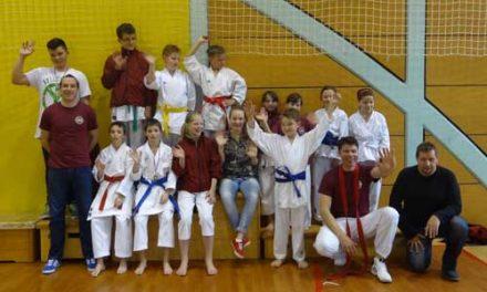 2.zlati, 4.srebrne in 5.bronastih na 4.kolu karate lige