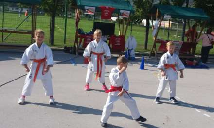 Predstavitev karateja v sklopu projekta: Bodimo ZDRAVI, AKTIVNI, ČILI ŠMARČANI …