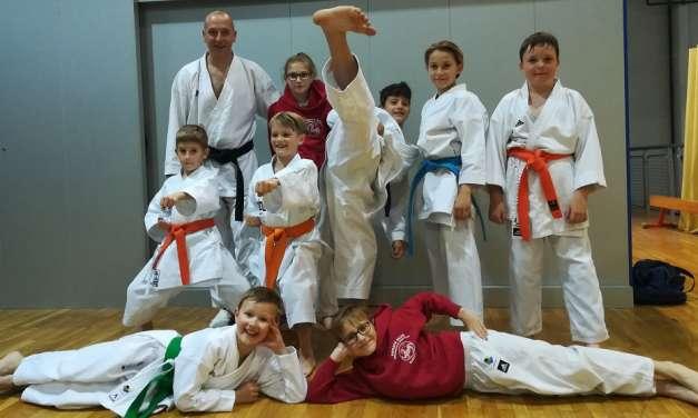 Karateisti Kozjanskega in Obsotelja osvojili 8.medalj na 2.pkt Slovenije