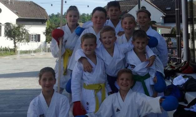 V Vasi Lipa karateisti izvedli kratko predstavitev